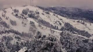 bogus snow.jpg