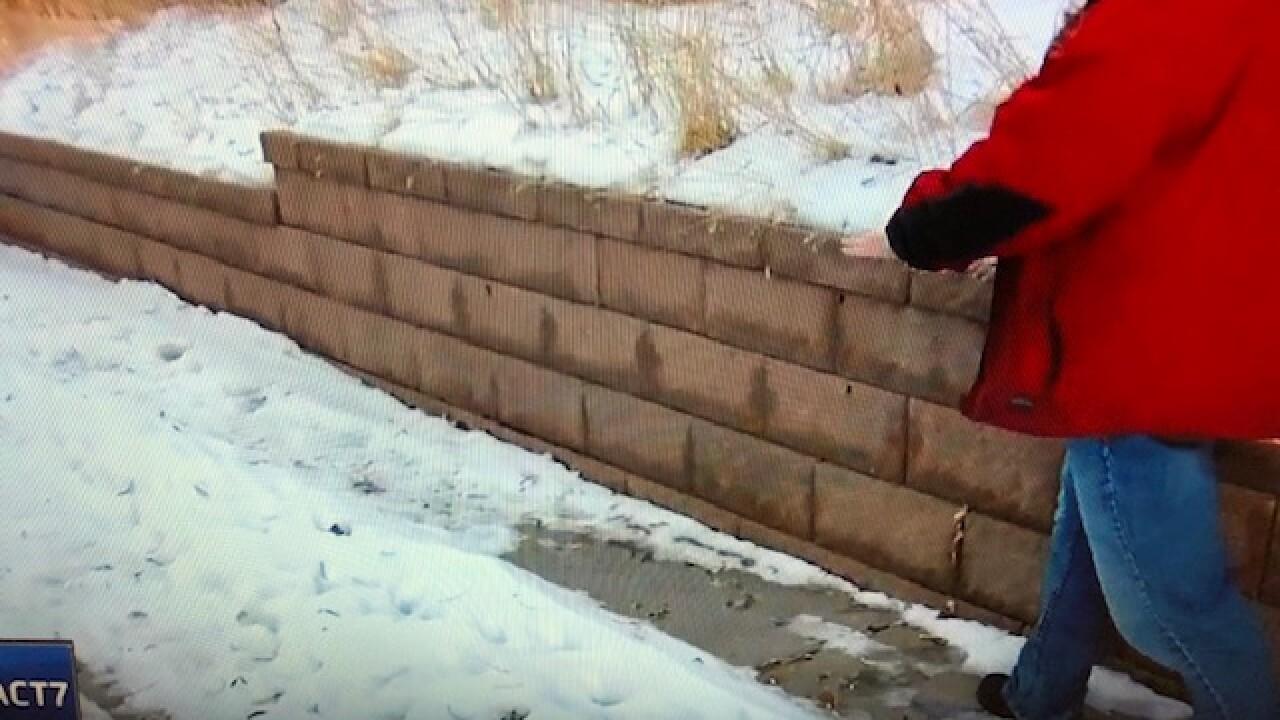 Snowy Sidewalk.jpg