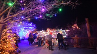 Electric Safari returns at Cheyenne Mountain Zoo