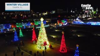 Winter Village Tampa.jpg