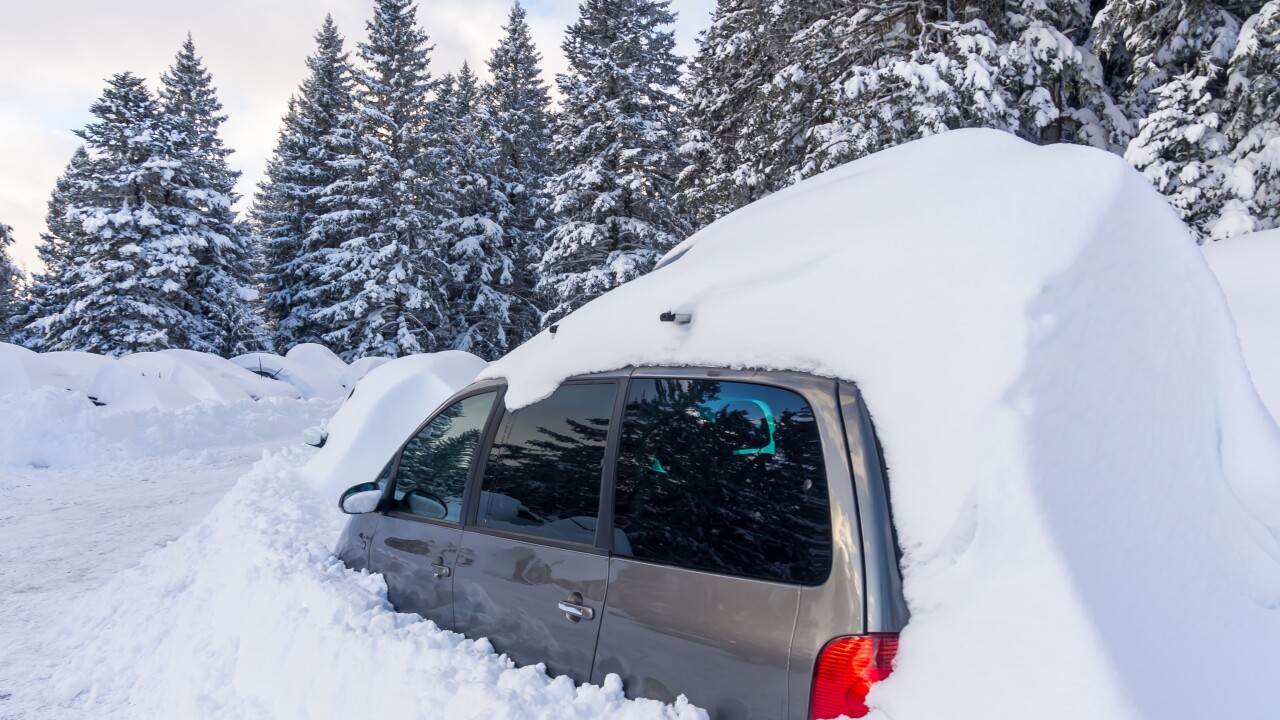Man and dog survive 5 days in snowbound vehicle by eating taco sauce packets