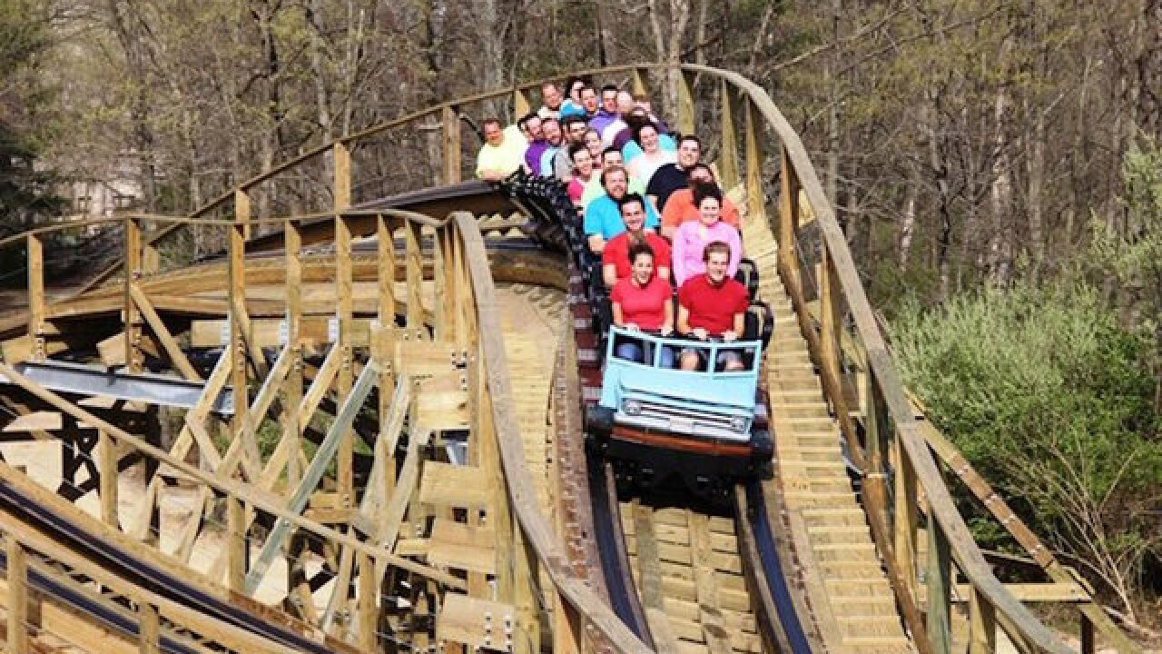 10 new roller coasters to try this year, according to a fanatic