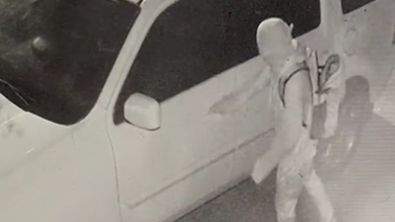 Franklin Vehicle Burglary - Home Surveillance.png