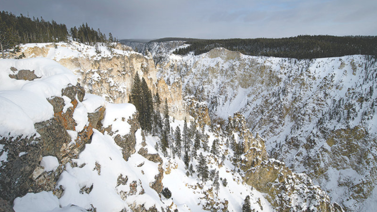 Hiker rescued from Yellowstone Canyon was seeking Fenn treasure