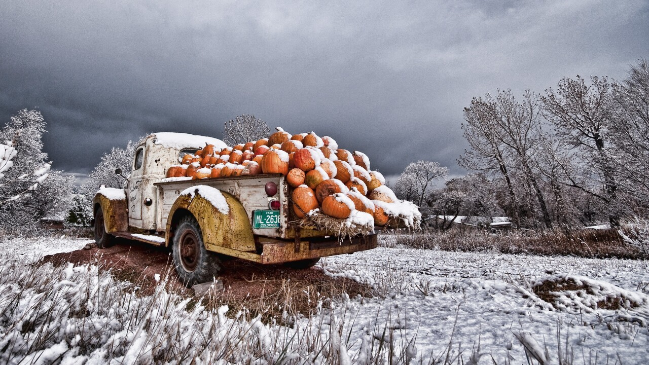 Life in focus: The hope and resilience of a Colorado photographer's fight with stage 4 cancer