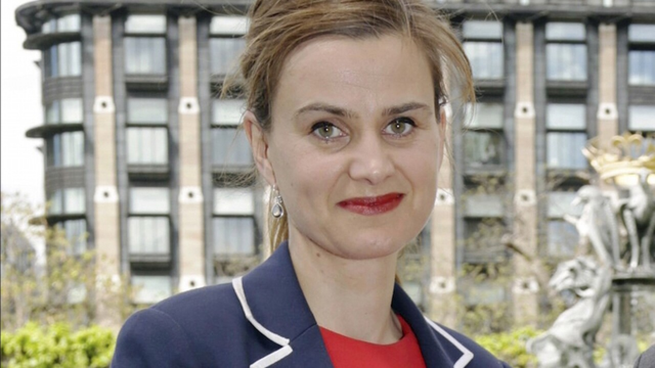 British politician killed in vicious attack