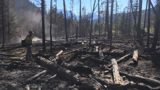 straight creek fire.png