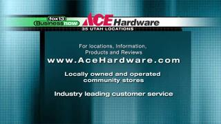 Business Now: AceHardware