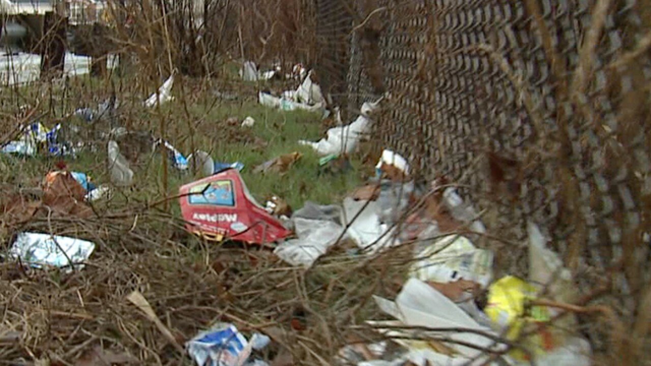 Cleveland's litter problem: Can it be reduced?