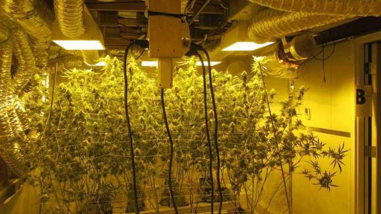 Realtors resist illegal pot house registry push