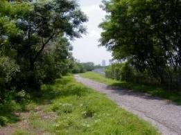 McKay Bay Trail by City of Tampa.jpg