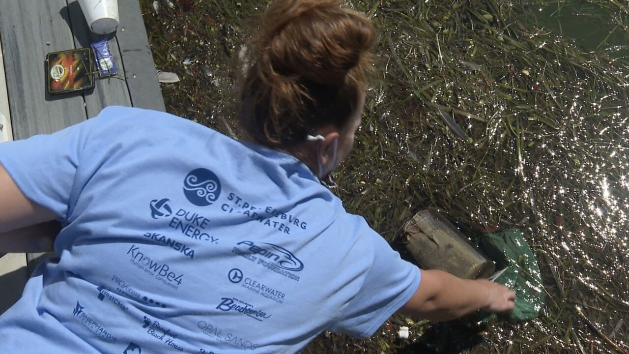 Big-Cleanup-Clearwater-WFTS.jpg