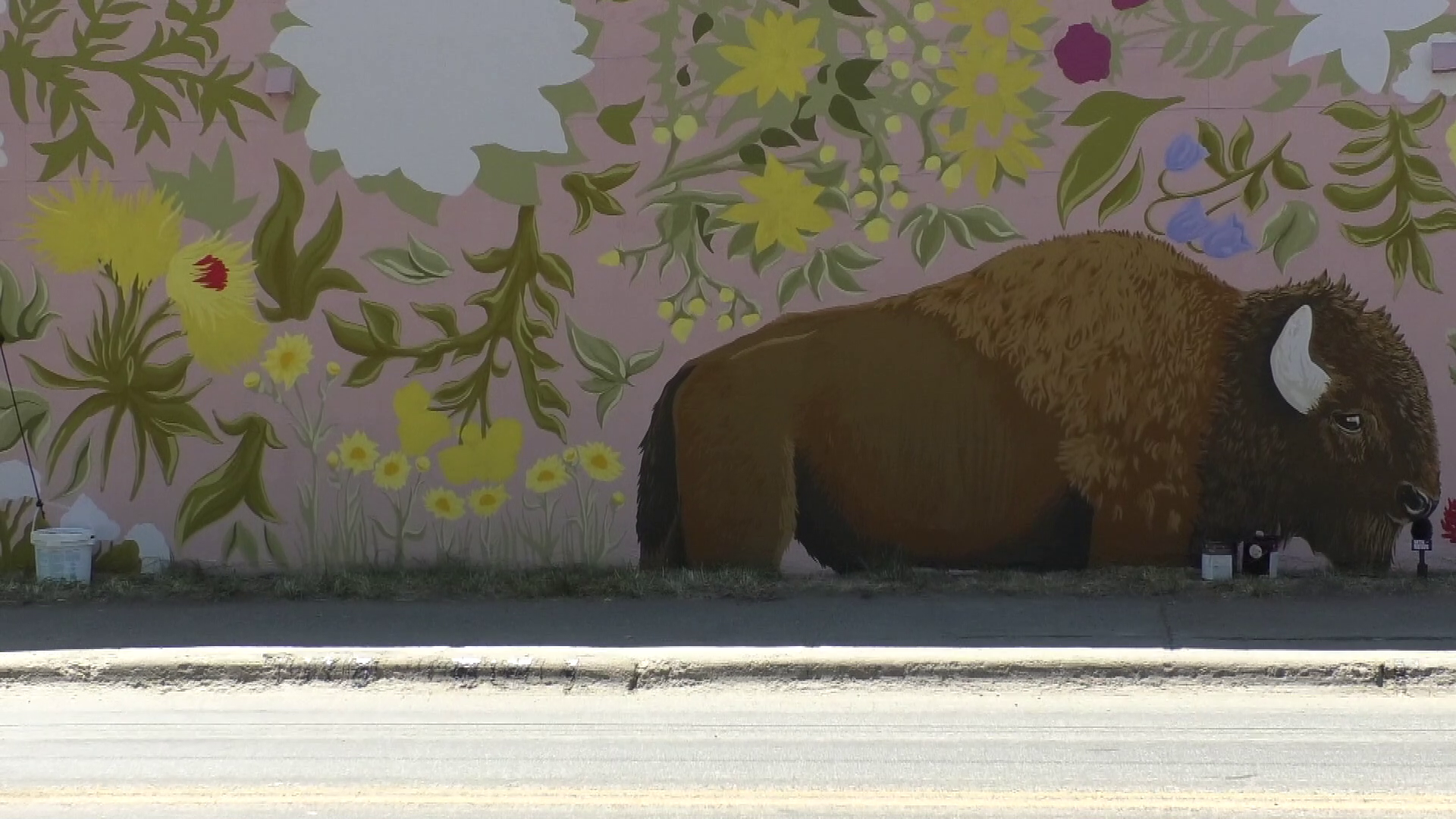 bison on mural.png