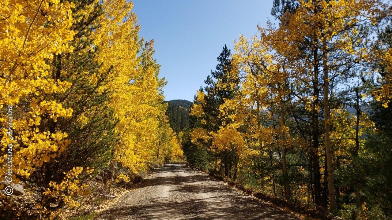 Corona Pass