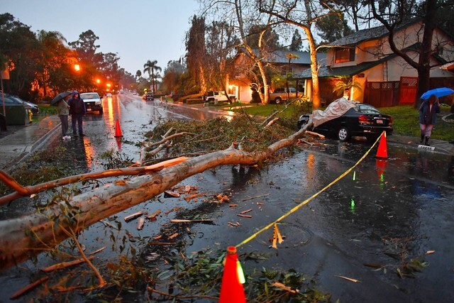 GALLERY: Storm damage across the county