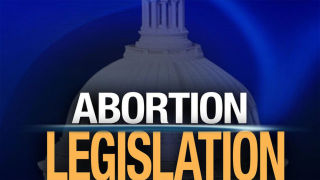 Florida Republicans inch closer to new abortion restrictions on Roe V. Wade anniversary
