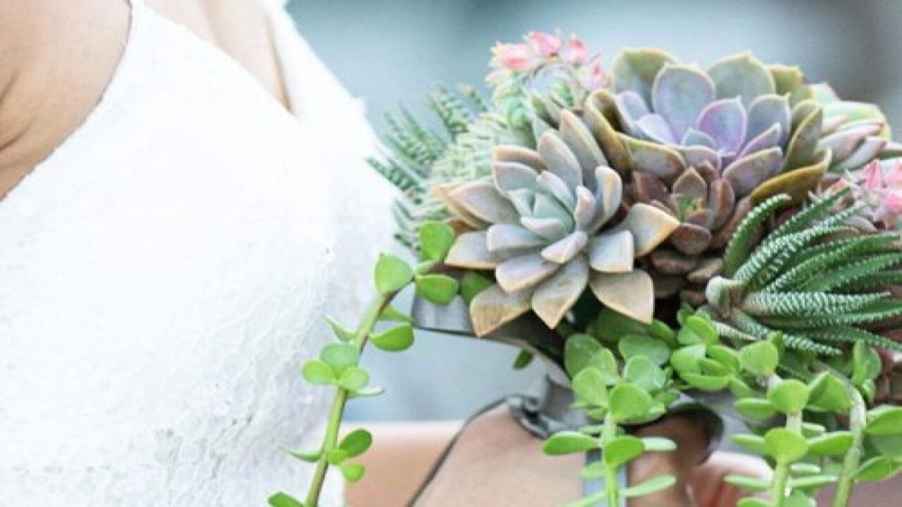 Some Brides Are Carrying Bouquets Made From Succulents Instead Of Flowers And They Are Stunning