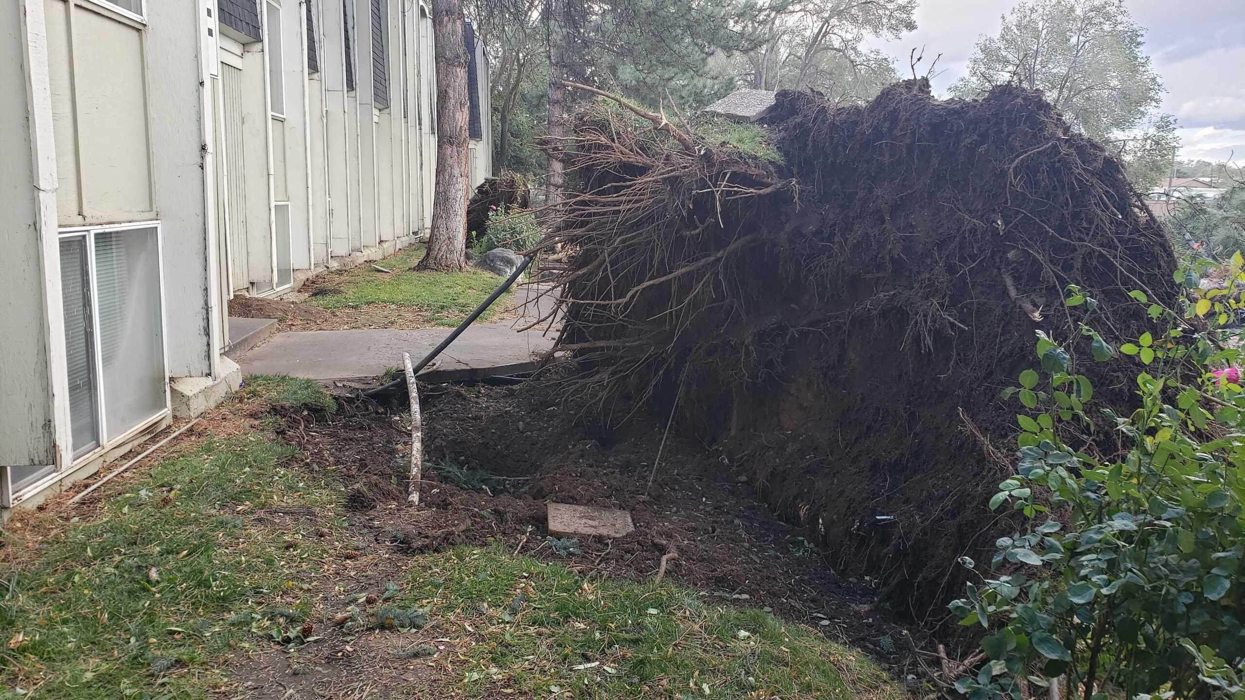 Wind Damage in Ogden (13).jpg