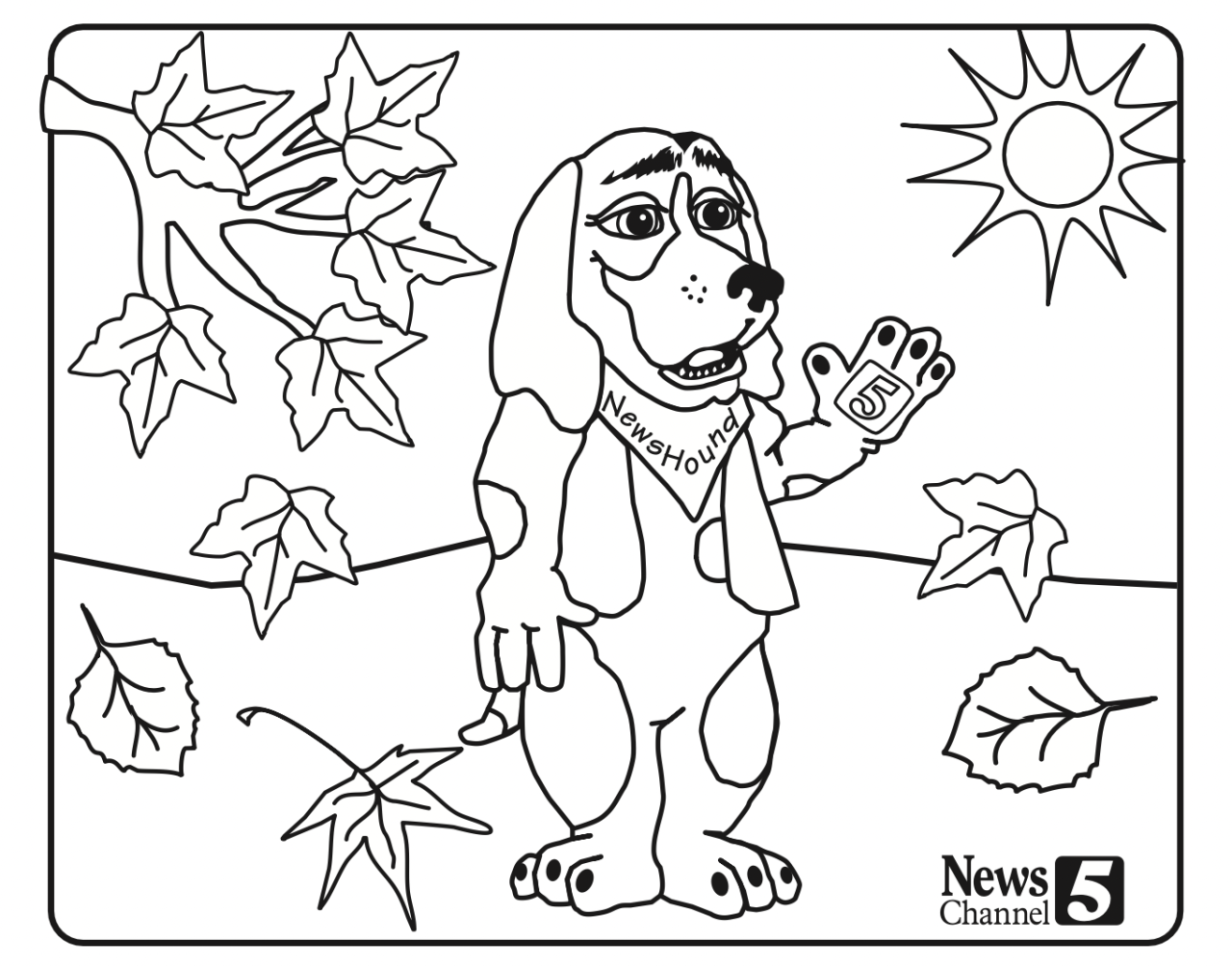 Newshound 2