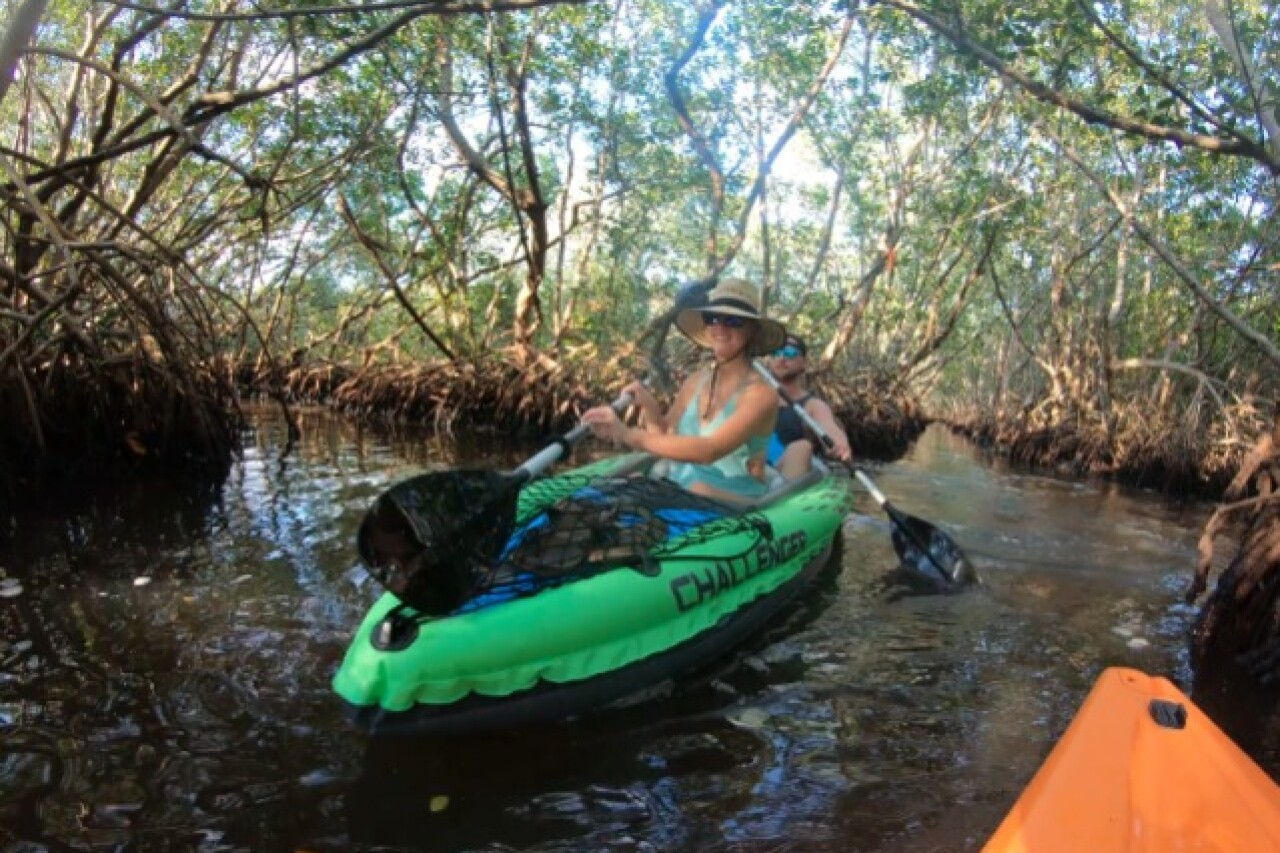 Kayak through mangrove tunnels at Weedon Island Preserve on map of lafayette county, map of routt county, map of glades county, map of st. lucie county, map of manatee county, map of madison county, map of st. johns county, map of prince george's county, map of forsyth county, map of missaukee county, map of martin county, map of duval county, map of chicot county, map of du page county, map of pasco county, map of gadsden county, map of washington county, map of stanislaus county, map of vanderburgh county, map of jackson county,