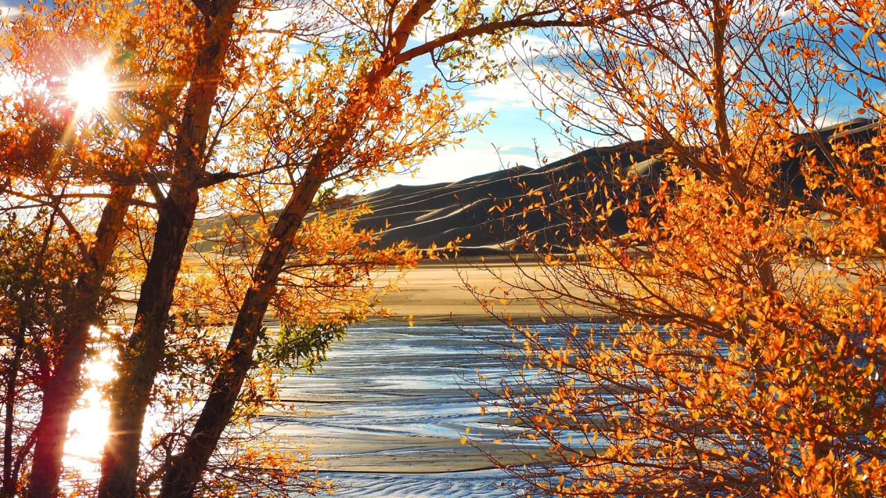 Great Sand Dunes National Park and Preserve in the Fall 11.jpg