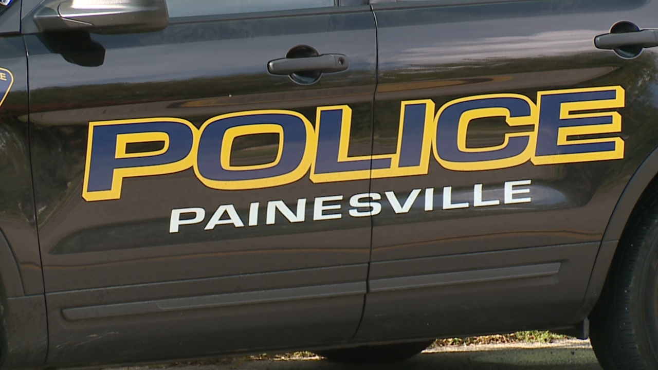 Painesville police car