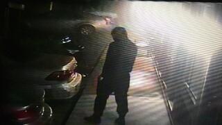 Arbor Inn Theft from Car 2.jpg