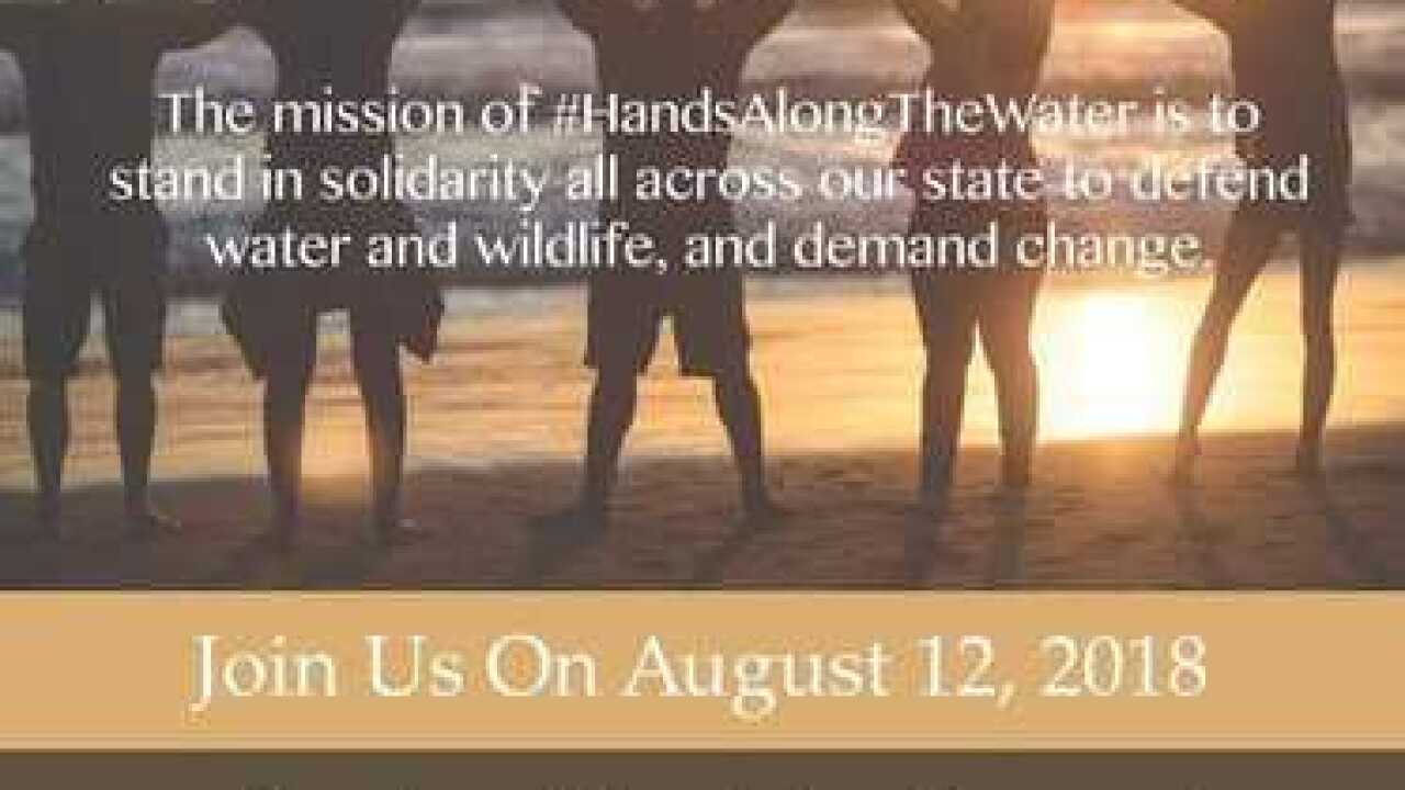 'Hands Along the Water' rally for clean water and wildlife