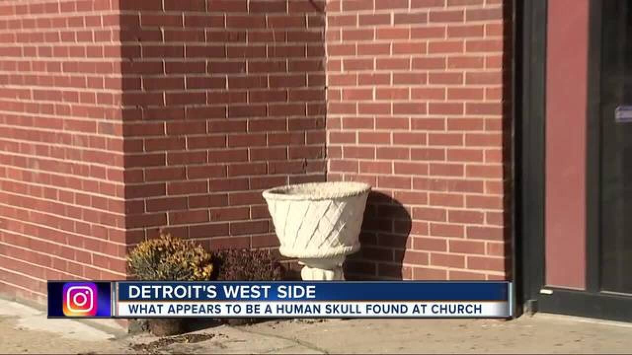 Police: Human skull found on Detroit's west side