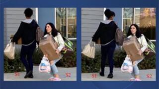 chula_vista_package_thieves.jpg