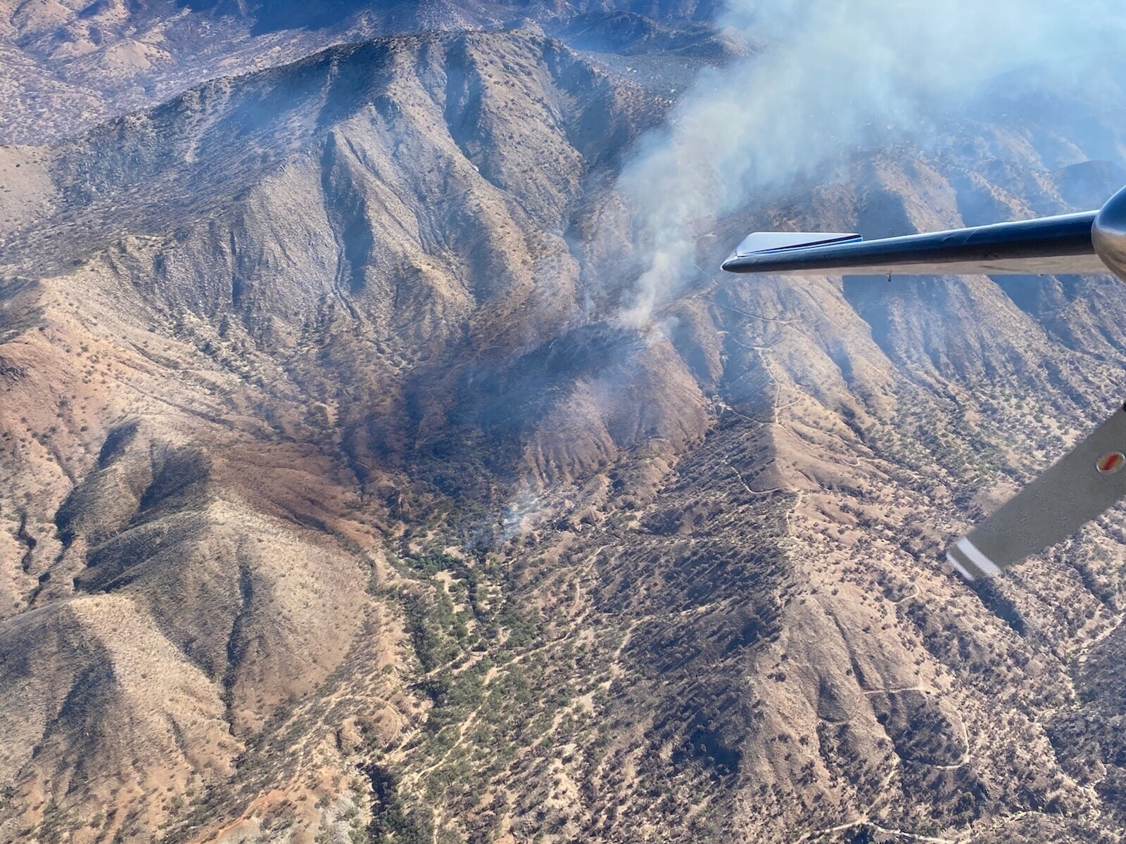 Aerial photo from the U.S. Forest Service captures the Shamrock Fire on June 10, 2021.