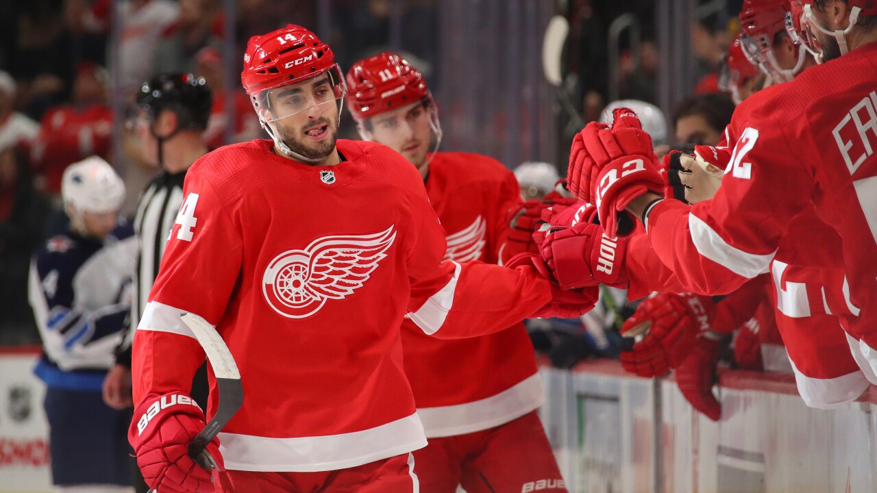 Robby Fabbri scores twice, Red Wings snap 12-game winless streak