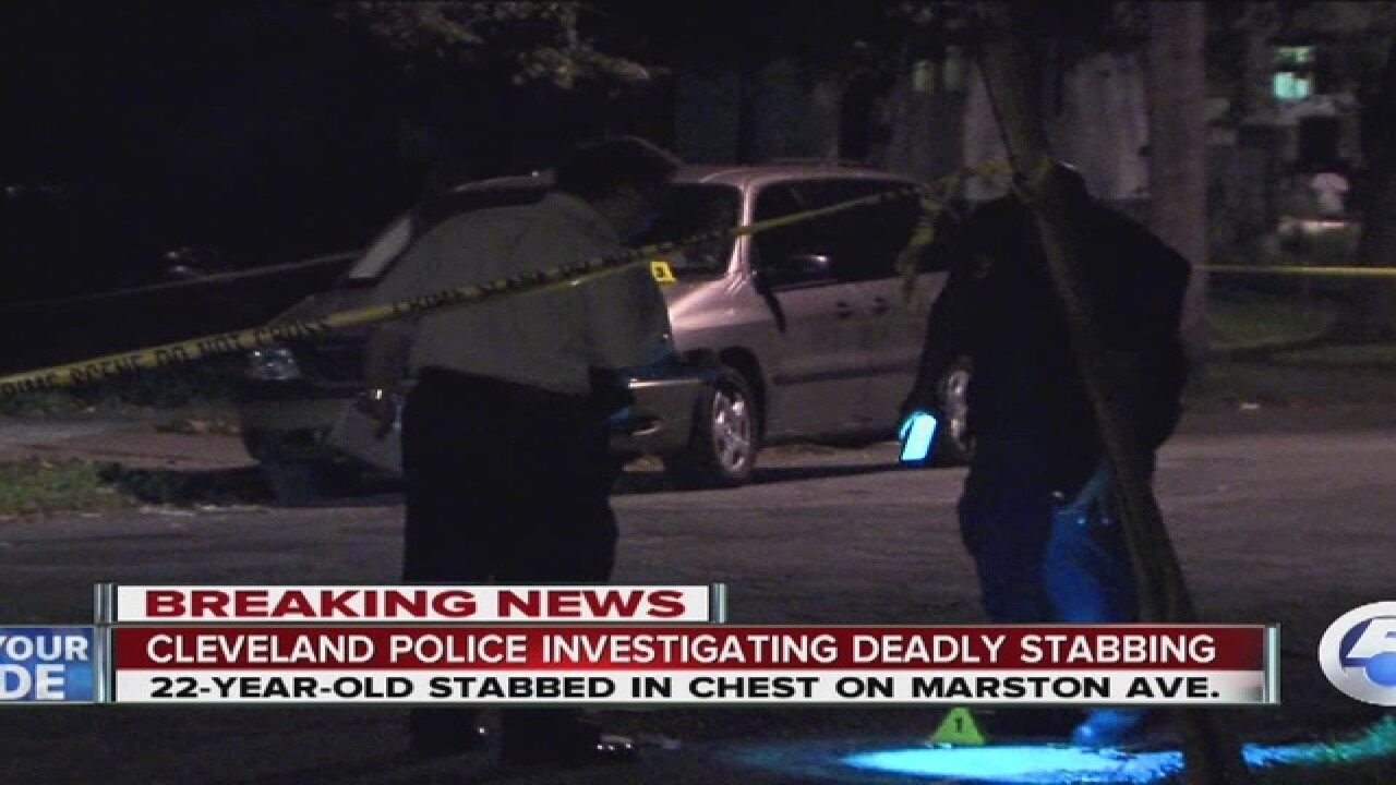 Man stabbed to death in Cleveland ID'd