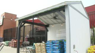 CMR students build pavilion