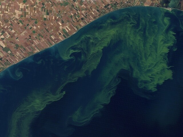 Judge dismisses lawsuit seeking action on Lake Erie algae