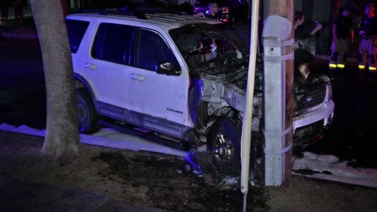 Driver says cat caused him to swerve, crash SUV