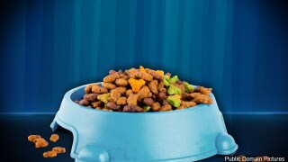STILL UNTITLED: Pet Food