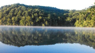 Woman Attacked On Trail at Radnor Lake State Park