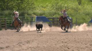 Belgrade rodeo trio takes home state titles