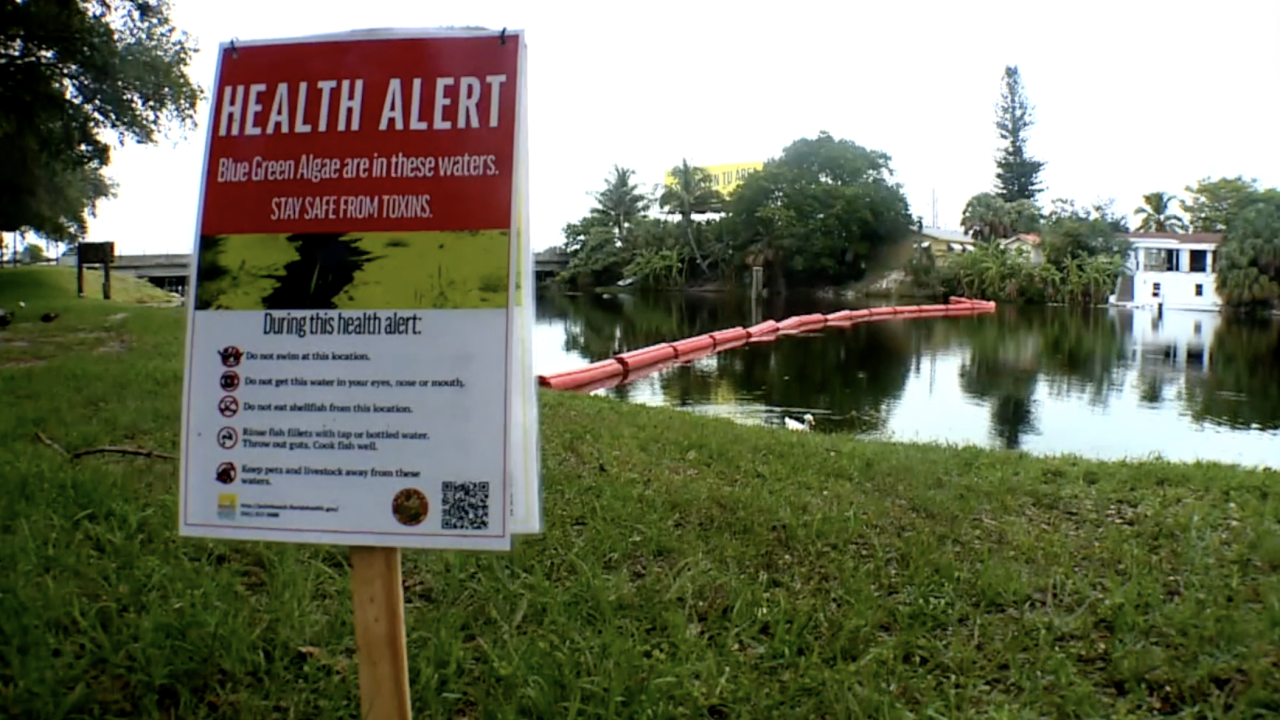 The toxins created by blue-green algae are potentially dangerous. Health officials know humans and pets should avoid coming into contact with it on their skin, but not much is known about how blue-green algae might affect the air quality nearby.