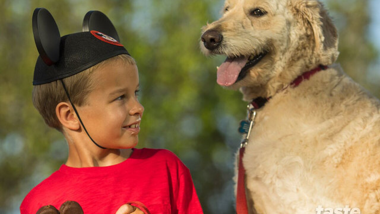 Select Walt Disney World hotels welcome guests and their dogs starting Oct. 15