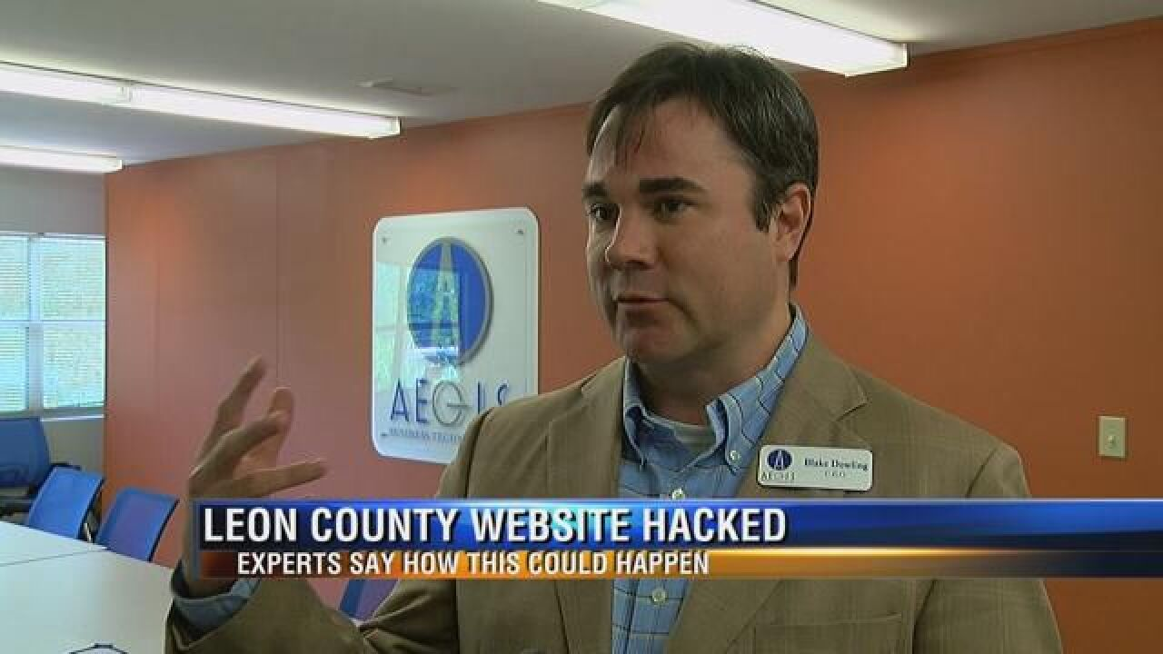 Leon Co. government works to get website back online