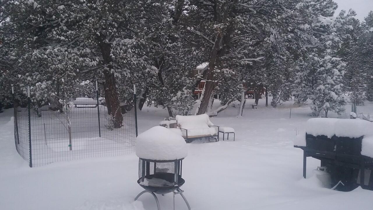 Overgaard Snow 2-18-19