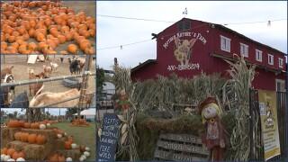 Halloween Farms.jpg