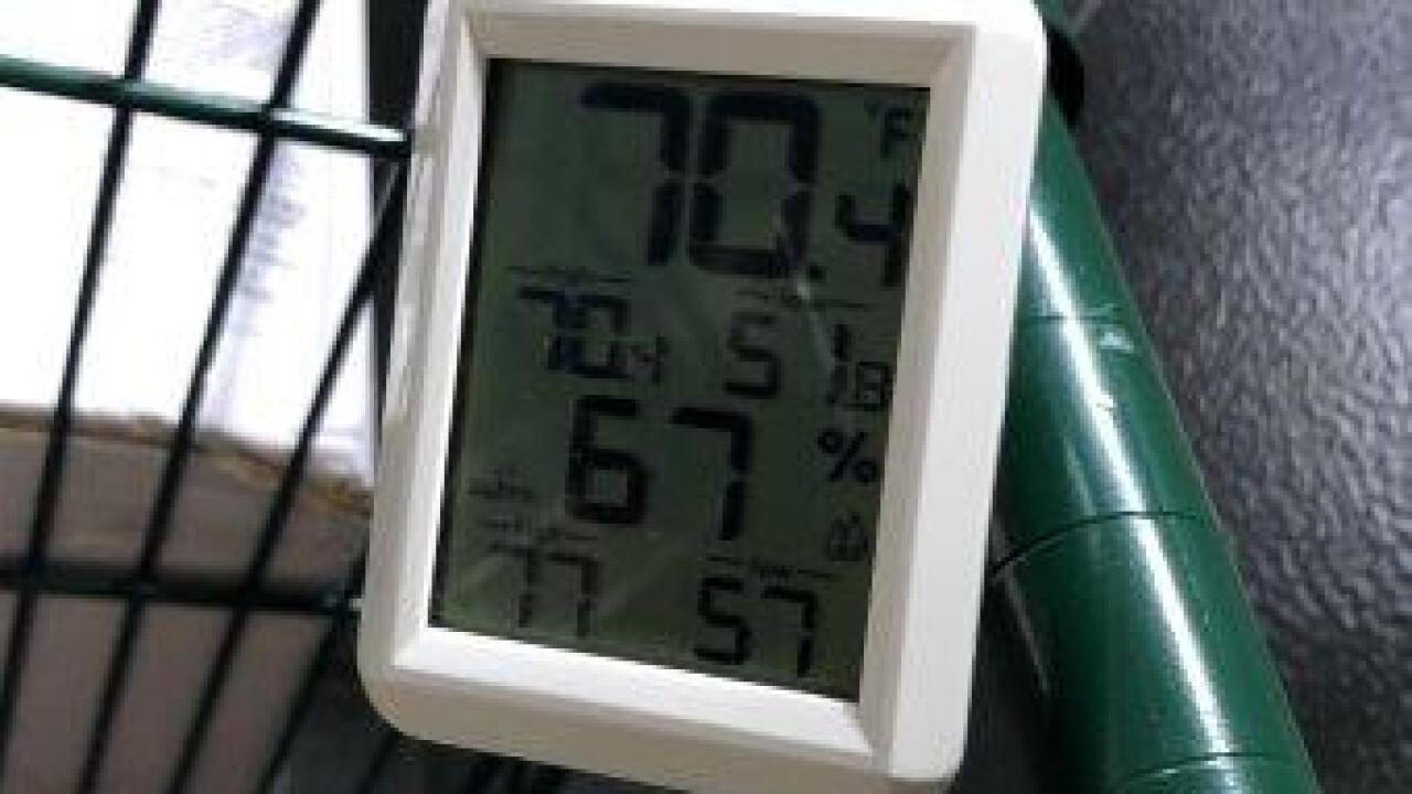 40. Walk-in temp at 446pm.jpg