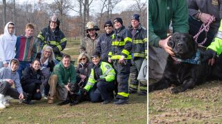 Dog rescued from drain pipe after falling into freezing pond on Long Island