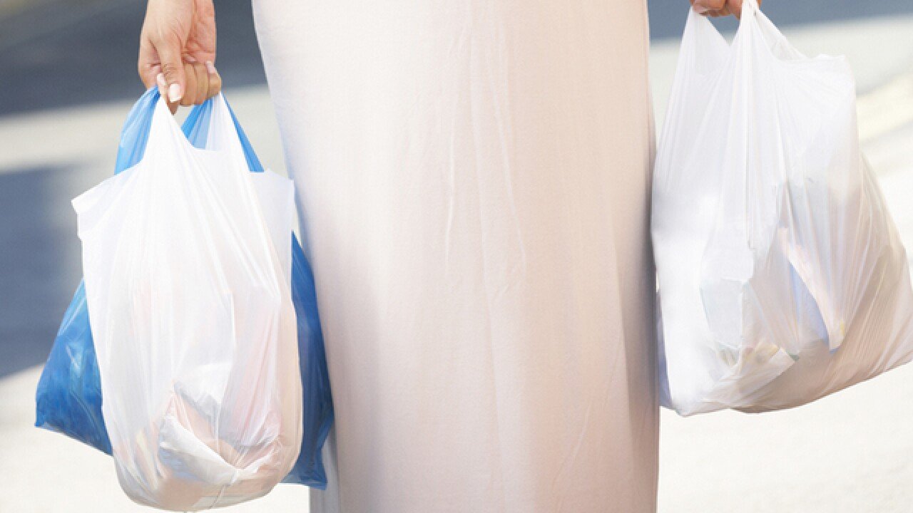 Plastic Bag Ban Proposed In Nashville By Metro Councilmembers