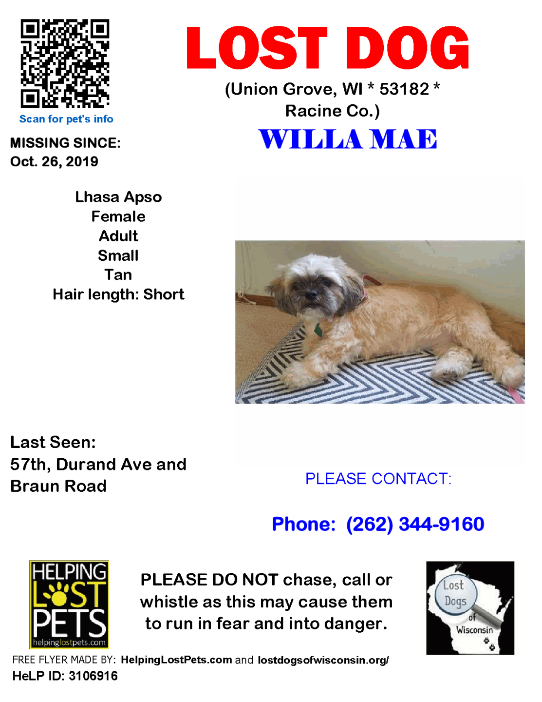 1026 Willa Lhaso Apso Adult.png