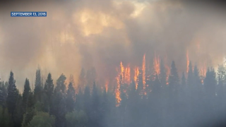 wildfire in 2016_christopher linsmayer.png