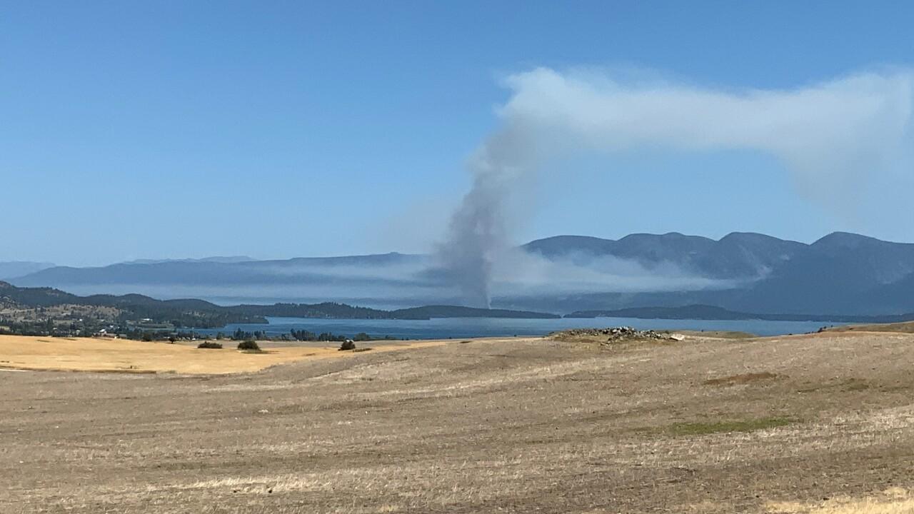 bird island fire 4.jpg